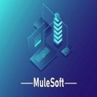 Mulesoft Online Training
